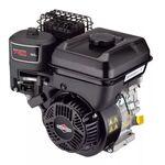 Двигатель бензиновый Briggs&Stratton BS750 6 л.с.